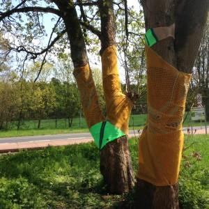 aachenstricktschoen Maibaumkleid 2016 5