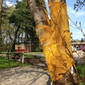 aachenstricktschoen Maibaumkleid 2016 8
